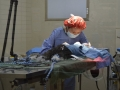 Dr. Huang in Surgery